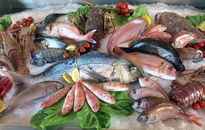 pescado vitamina b